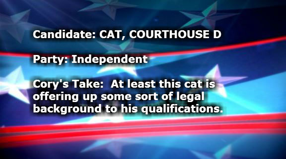 CAT COURTHOUSE D