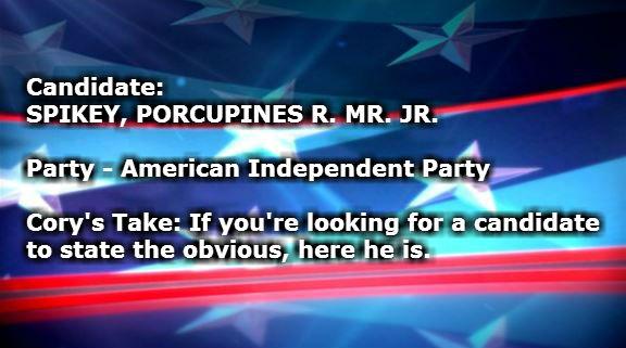 SPIKEY PORCUPINES R MR JR